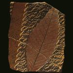 Fossils erdők
