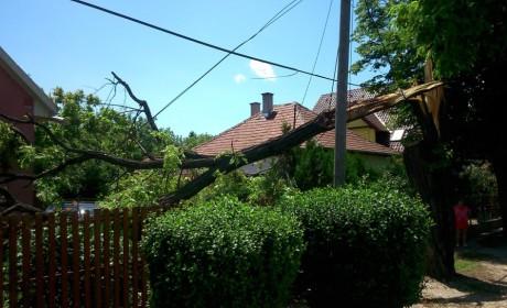 Előzze meg a vihar okozta károkat!
