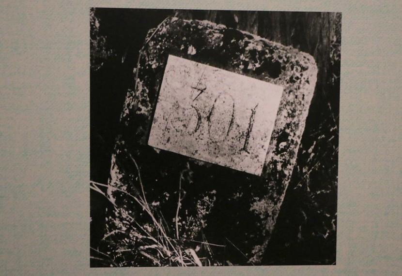 A tiltott parcellától a Nemzeti Sírkertig