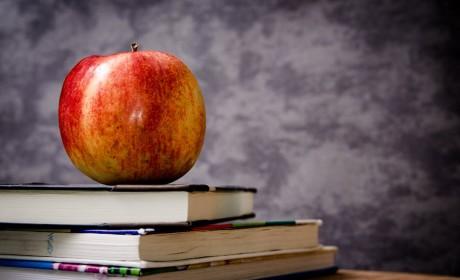 Ingyenes étkezés és tankönyv még több gyereknek