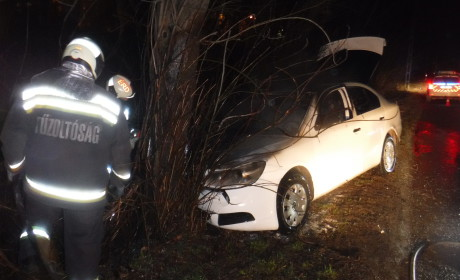 Fának ütközött egy autó