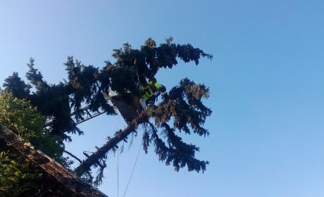 Házakat öntött el, fákat döntött ki a keddi vihar