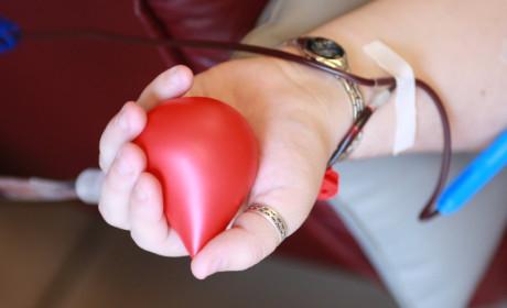 Ismét lehet vért adni